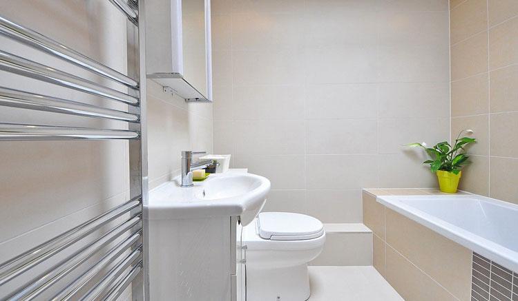 aranżacja łazienki z kwiatem doniczkowym